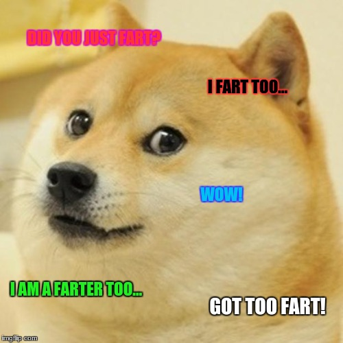 Doge Meme | DID YOU JUST FART? I FART TOO... WOW! I AM A FARTER TOO... GOT TOO FART! | image tagged in memes,doge | made w/ Imgflip meme maker
