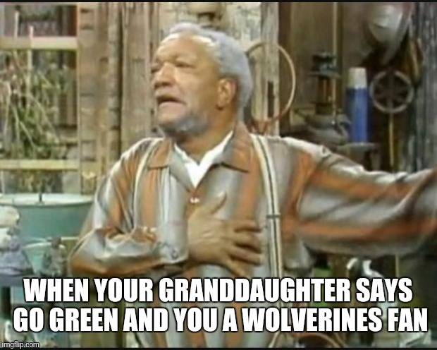 Fred Sanford | WHEN YOUR GRANDDAUGHTER SAYS GO GREEN AND YOU A WOLVERINES FAN | image tagged in fred sanford | made w/ Imgflip meme maker