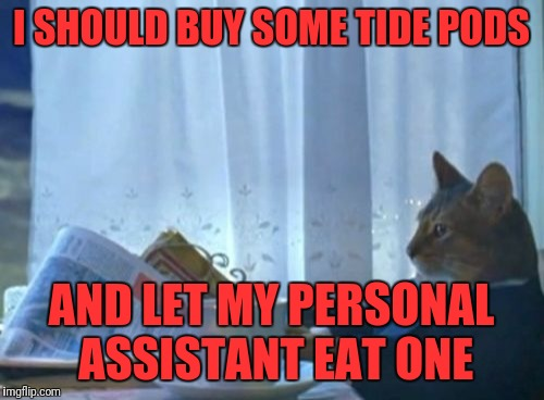 I Should Buy A Boat Cat Meme | I SHOULD BUY SOME TIDE PODS AND LET MY PERSONAL ASSISTANT EAT ONE | image tagged in memes,i should buy a boat cat | made w/ Imgflip meme maker