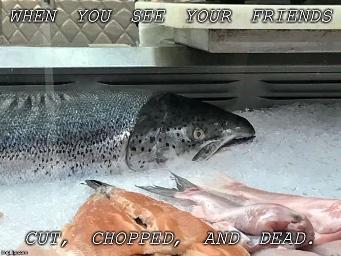 WHEN YOU SEE YOUR FRIENDS CUT, CHOPPED, AND DEAD. | image tagged in scared salmon | made w/ Imgflip meme maker