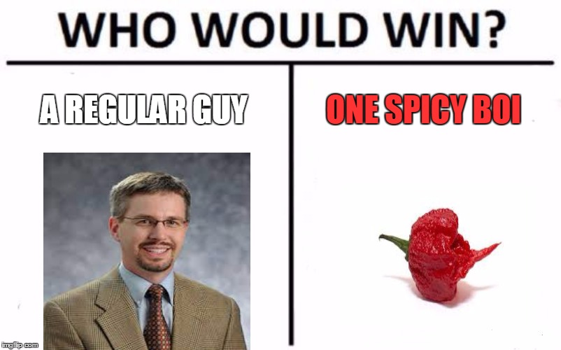 Who Would Win? Meme | A REGULAR GUY ONE SPICY BOI | image tagged in memes,who would win | made w/ Imgflip meme maker