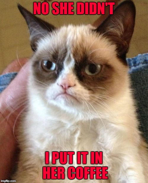 Grumpy Cat Meme | NO SHE DIDN'T I PUT IT IN HER COFFEE | image tagged in memes,grumpy cat | made w/ Imgflip meme maker