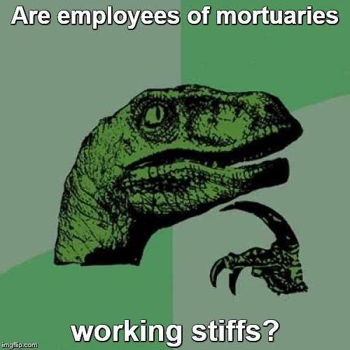 Philosoraptor Meme | Are employees of mortuaries working stiffs? | image tagged in memes,philosoraptor | made w/ Imgflip meme maker