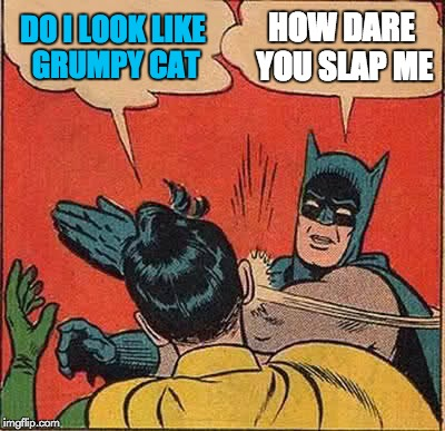 Batman Slapping Robin Meme | DO I LOOK LIKE GRUMPY CAT HOW DARE YOU SLAP ME | image tagged in memes,batman slapping robin | made w/ Imgflip meme maker