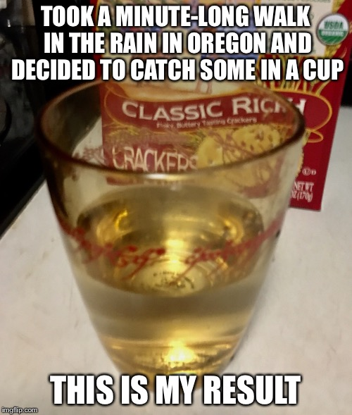 It gets rainy here... | TOOK A MINUTE-LONG WALK IN THE RAIN IN OREGON AND DECIDED TO CATCH SOME IN A CUP THIS IS MY RESULT | image tagged in memes,funny,lol,rain,water,cup | made w/ Imgflip meme maker
