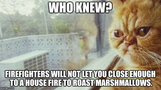 WHO KNEW? FIREFIGHTERS WILL NOT LET YOU CLOSE ENOUGH TO A HOUSE FIRE TO ROAST MARSHMALLOWS. | image tagged in who knew | made w/ Imgflip meme maker