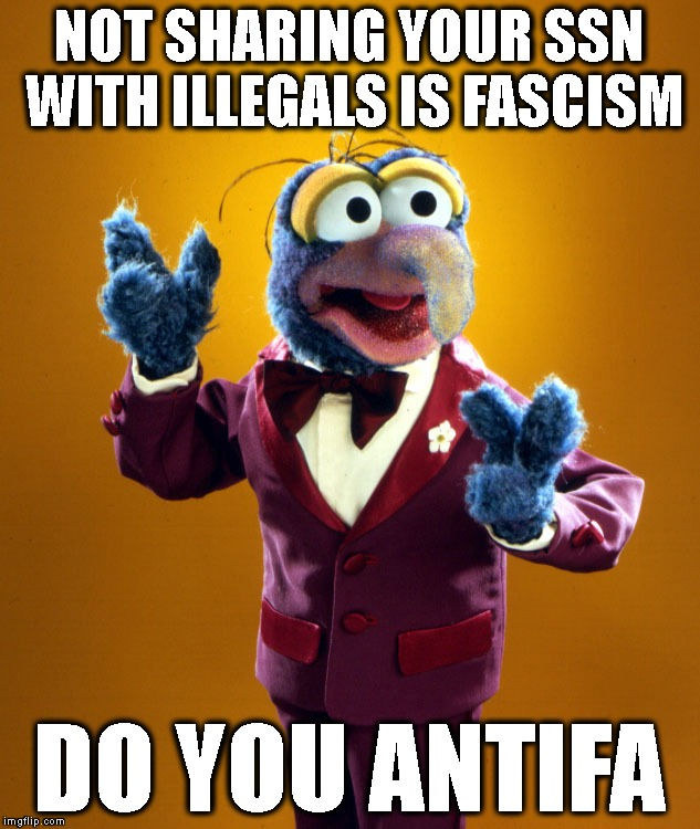 Those Hard Working Aliens | NOT SHARING YOUR SSN WITH ILLEGALS IS FASCISM DO YOU ANTIFA | image tagged in antifa,millennials,liberal logic,democrat party,liberals vs conservatives,gonzo | made w/ Imgflip meme maker