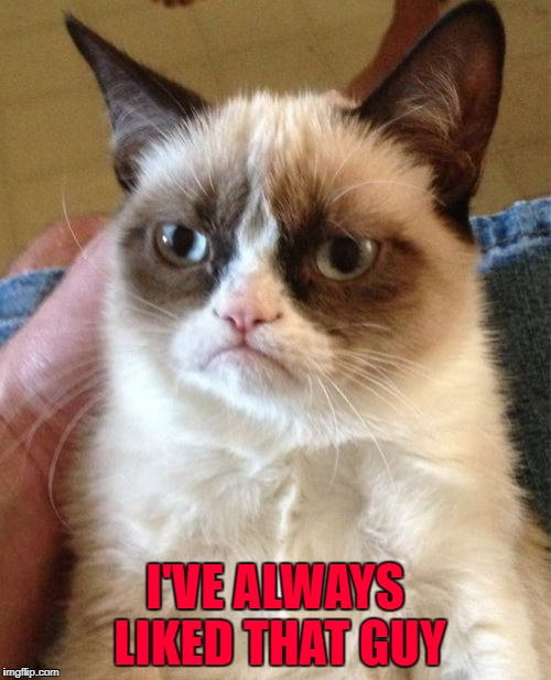 Grumpy Cat Meme | I'VE ALWAYS LIKED THAT GUY | image tagged in memes,grumpy cat | made w/ Imgflip meme maker