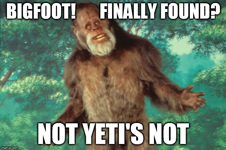 The continuing search for bigfoot | BIGFOOT!       FINALLY FOUND? NOT YETI'S NOT | image tagged in bigfoot,yeti,leaderboard,homepage,bad buns | made w/ Imgflip meme maker