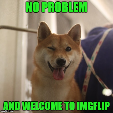 NO PROBLEM AND WELCOME TO IMGFLIP | made w/ Imgflip meme maker