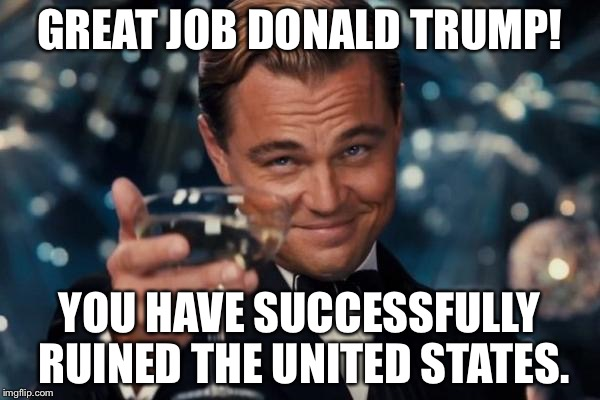 Leonardo Dicaprio Cheers Meme | GREAT JOB DONALD TRUMP! YOU HAVE SUCCESSFULLY RUINED THE UNITED STATES. | image tagged in memes,leonardo dicaprio cheers | made w/ Imgflip meme maker