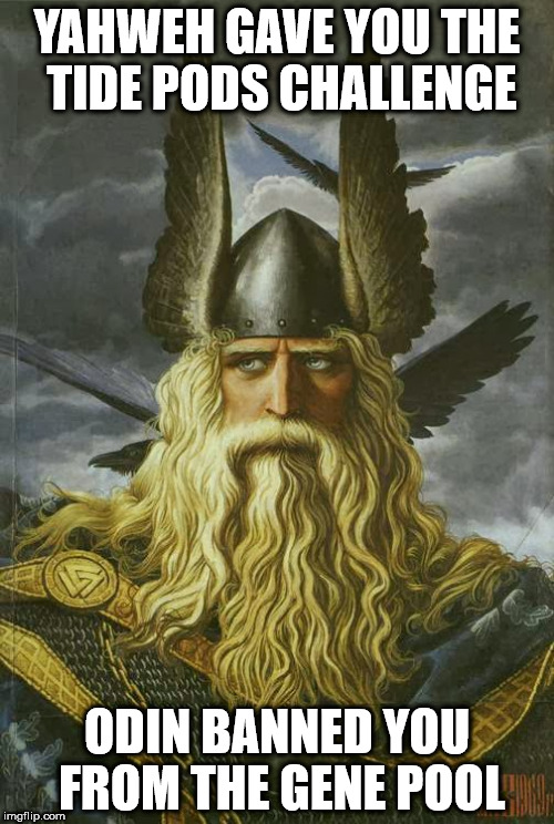 Odin | YAHWEH GAVE YOU THE TIDE PODS CHALLENGE ODIN BANNED YOU FROM THE GENE POOL | image tagged in odin | made w/ Imgflip meme maker