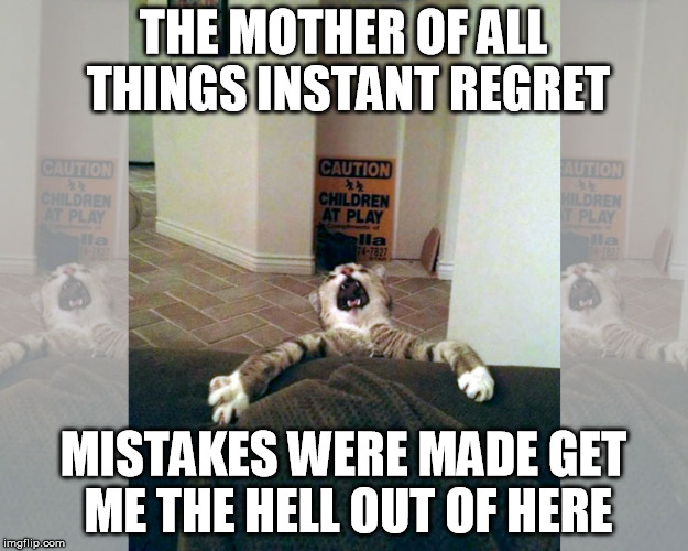 Note To God Help! |  THE MOTHER OF ALL THINGS INSTANT REGRET; MISTAKES WERE MADE GET ME THE HELL OUT OF HERE | image tagged in mother of all thing instant regret,oh shit,ive made a huge mistake,mistakes were made,instant regret,i regret this decision | made w/ Imgflip meme maker