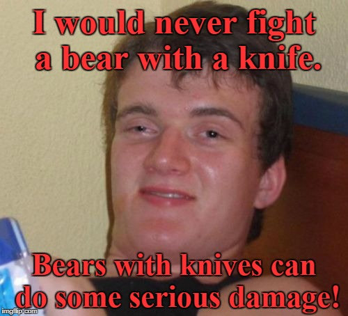 10 Guy Meme | I would never fight a bear with a knife. Bears with knives can do some serious damage! | image tagged in memes,10 guy | made w/ Imgflip meme maker
