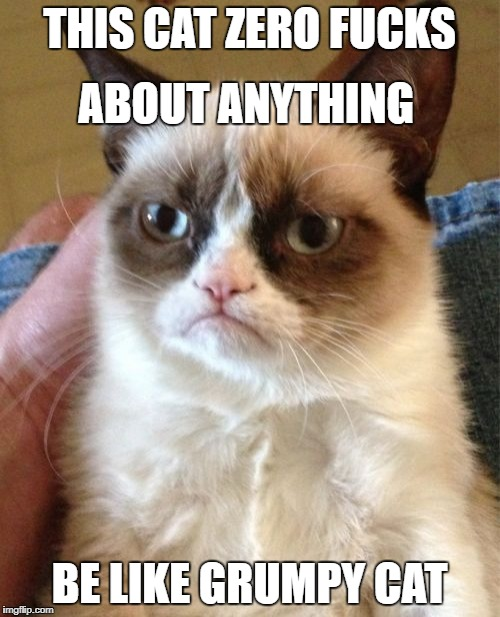 Grumpy Cat Meme | THIS CAT ZERO F**KS BE LIKE GRUMPY CAT ABOUT ANYTHING | image tagged in memes,grumpy cat | made w/ Imgflip meme maker