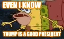 Cave-bob politics | EVEN I KNOW TRUMP IS A GOOD PRESIDENT | image tagged in memes,spongegar,politics,maga,trump,republican | made w/ Imgflip meme maker