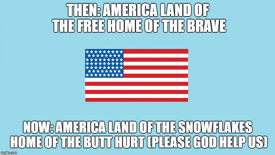 THEN: AMERICA LAND OF THE FREE HOME OF THE BRAVE NOW: AMERICA LAND OF THE SNOWFLAKES HOME OF THE BUTT HURT (PLEASE GOD HELP US) | image tagged in american flag with border | made w/ Imgflip meme maker