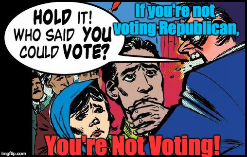 Voter Suppression | If you're not voting Republican, You're Not Voting! | image tagged in voter caging,cross-check,voter id,redistricting | made w/ Imgflip meme maker