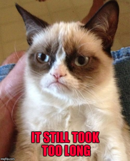 Grumpy Cat Meme | IT STILL TOOK TOO LONG | image tagged in memes,grumpy cat | made w/ Imgflip meme maker