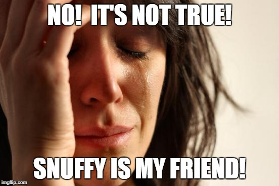 First World Problems Meme | NO!  IT'S NOT TRUE! SNUFFY IS MY FRIEND! | image tagged in memes,first world problems | made w/ Imgflip meme maker