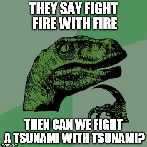 fight fire with fire? | THEY SAY FIGHT FIRE WITH FIRE THEN CAN WE FIGHT A TSUNAMI WITH TSUNAMI? | image tagged in memes,philosoraptor | made w/ Imgflip meme maker
