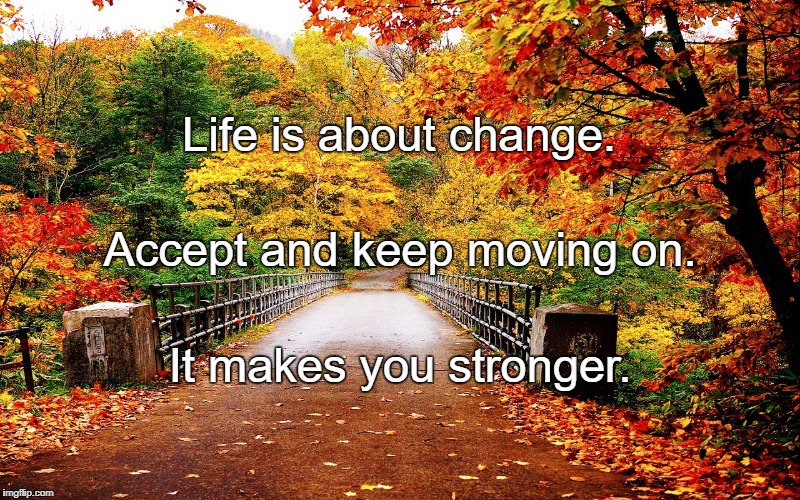 Autumn bridge | Life is about change. It makes you stronger. Accept and keep moving on. | image tagged in autumn bridge | made w/ Imgflip meme maker