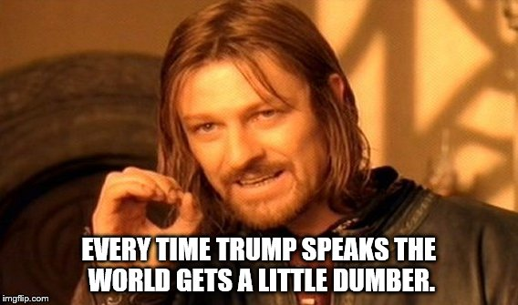 One Does Not Simply Meme | EVERY TIME TRUMP SPEAKS THE WORLD GETS A LITTLE DUMBER. | image tagged in memes,one does not simply | made w/ Imgflip meme maker