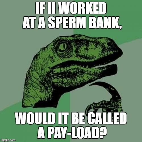 Philosoraptor Meme | IF II WORKED AT A SPERM BANK, WOULD IT BE CALLED A PAY-LOAD? | image tagged in memes,philosoraptor | made w/ Imgflip meme maker