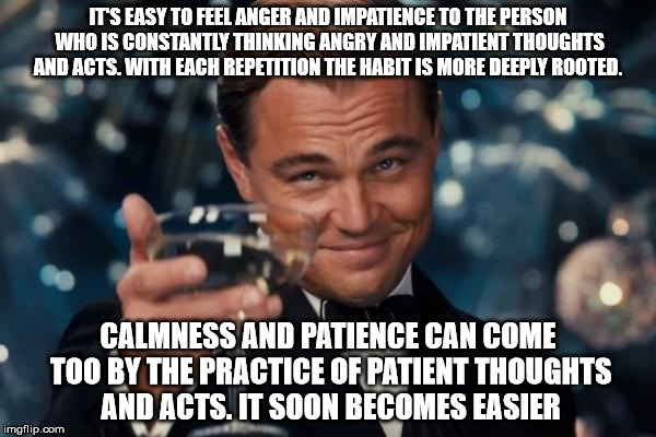 Better thinking habits | IT'S EASY TO FEEL ANGER AND IMPATIENCE TO THE PERSON WHO IS CONSTANTLY THINKING ANGRY AND IMPATIENT THOUGHTS AND ACTS. WITH EACH REPETITION  | image tagged in memes,leonardo dicaprio cheers,thoughts,habits | made w/ Imgflip meme maker