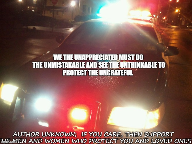 Protectors | WE THE UNAPPRECIATED MUST DO THE UNMISTAKABLE AND SEE THE UNTHINKABLE TO PROTECT THE UNGRATEFUL AUTHOR UNKNOWN;  IF YOU CARE, THEN SUPPORT T | image tagged in police | made w/ Imgflip meme maker