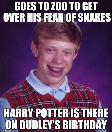 Bad Luck Brian Meme | GOES TO ZOO TO GET OVER HIS FEAR OF SNAKES HARRY POTTER IS THERE ON DUDLEY'S BIRTHDAY | image tagged in memes,bad luck brian,harry potter,dudley dursley,magic,movie references | made w/ Imgflip meme maker