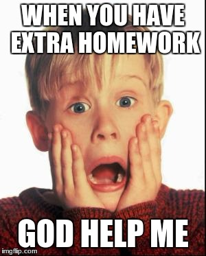 Home Alone Kid  | WHEN YOU HAVE EXTRA HOMEWORK GOD HELP ME | image tagged in home alone kid | made w/ Imgflip meme maker