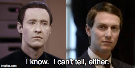 Jaredata | image tagged in jared,kushner,data,star trek,trump,separated at birth | made w/ Imgflip meme maker