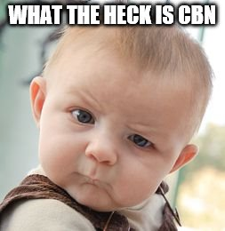 Skeptical Baby Meme | WHAT THE HECK IS CBN | image tagged in memes,skeptical baby | made w/ Imgflip meme maker