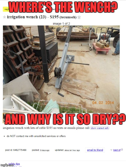 Spelling Matters | WHERE'S THE WENCH? AND WHY IS IT SO DRY?? | image tagged in bad grammar and spelling memes,funny,memes,craigslist | made w/ Imgflip meme maker