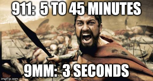 Sparta Leonidas Meme | 911:  5 TO 45 MINUTES 9MM:  3 SECONDS | image tagged in memes,sparta leonidas | made w/ Imgflip meme maker