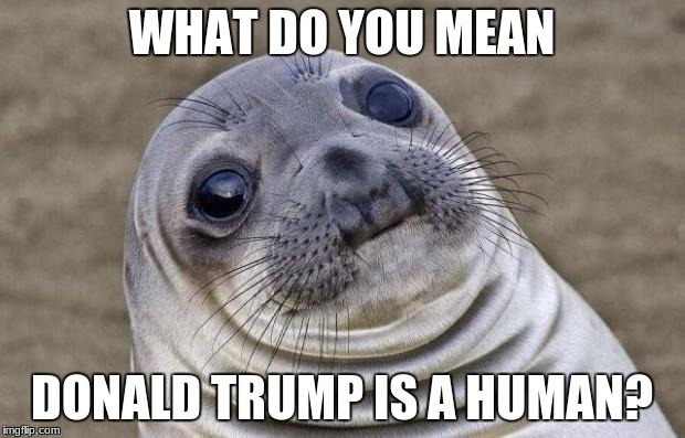 Awkward Moment Sealion Meme | WHAT DO YOU MEAN DONALD TRUMP IS A HUMAN? | image tagged in memes,awkward moment sealion | made w/ Imgflip meme maker