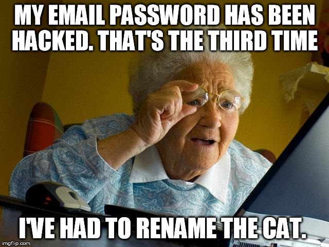 Grandma Finds The Internet Meme | MY EMAIL PASSWORD HAS BEEN HACKED. THAT'S THE THIRD TIME I'VE HAD TO RENAME THE CAT. | image tagged in memes,grandma finds the internet | made w/ Imgflip meme maker