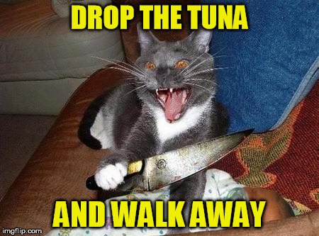 DROP THE TUNA AND WALK AWAY | made w/ Imgflip meme maker