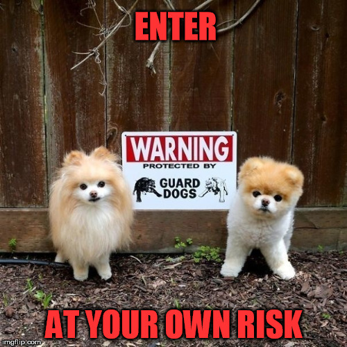 Beware | ENTER AT YOUR OWN RISK | image tagged in warning sign,cute puppies | made w/ Imgflip meme maker