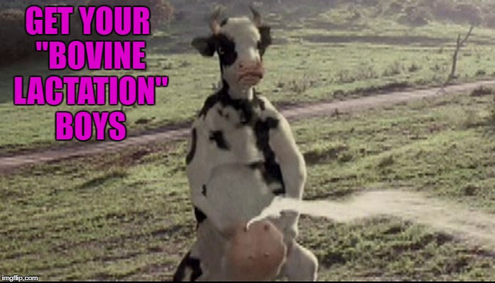 "GET YOUR ""BOVINE LACTATION"" BOYS 
