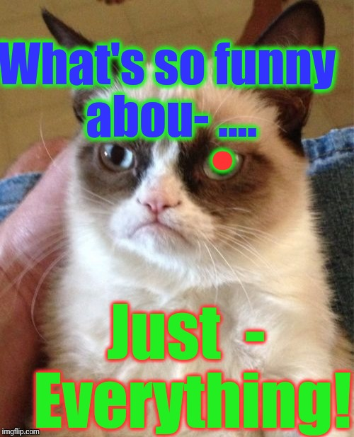 Grumpy Cat Meme | What's so funny abou- .... Just  -  Everything! . | image tagged in memes,grumpy cat | made w/ Imgflip meme maker