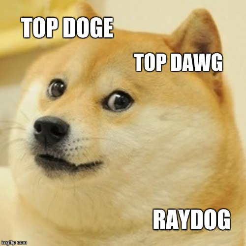 Doge Meme | TOP DOGE TOP DAWG RAYDOG | image tagged in memes,doge | made w/ Imgflip meme maker