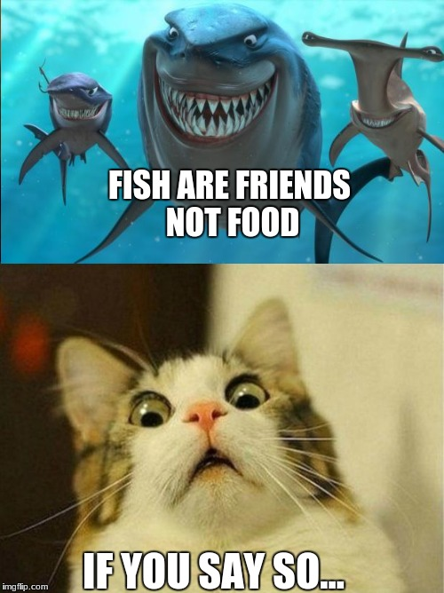 FISH ARE FRIENDS NOT FOOD IF YOU SAY SO... | made w/ Imgflip meme maker
