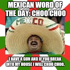 Mexican Fiesta | MEXICAN WORD OF THE DAY: CHOO CHOO I HAVE A GUN AND IF YOU BREAK INTO MY HOUSE I WILL CHOO CHOO. | image tagged in mexican fiesta,mexican word of the day | made w/ Imgflip meme maker