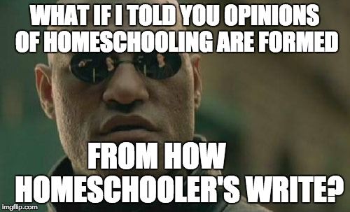 Matrix Morpheus Meme | WHAT IF I TOLD YOU OPINIONS OF HOMESCHOOLING ARE FORMED FROM HOW        HOMESCHOOLER'S WRITE? | image tagged in memes,matrix morpheus | made w/ Imgflip meme maker