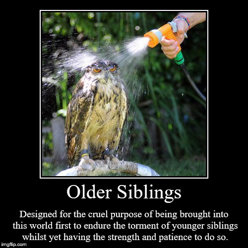 Older Siblings | Designed for the cruel purpose of being brought into this world first to endure the torment of younger siblings whilst yet  | image tagged in funny,demotivationals | made w/ Imgflip demotivational maker