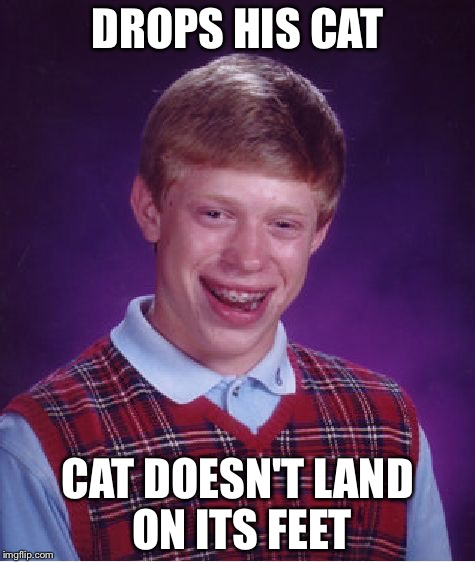 Cats land on their feet. Usually... | DROPS HIS CAT CAT DOESN'T LAND ON ITS FEET | image tagged in memes,bad luck brian,cats,feet | made w/ Imgflip meme maker