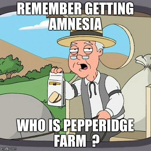 Pepperidge Farm Remembers Meme | REMEMBER GETTING AMNESIA WHO IS PEPPERIDGE FARM  ? | image tagged in memes,pepperidge farm remembers | made w/ Imgflip meme maker