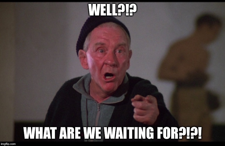 WELL?!? WHAT ARE WE WAITING FOR?!?! | image tagged in rocky balboa | made w/ Imgflip meme maker